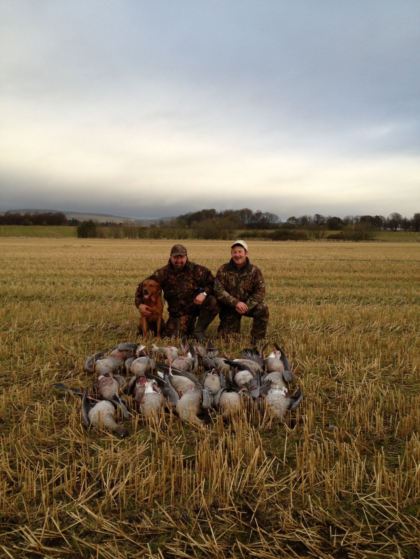 Stalking Hunting Galleryb Venator Pro