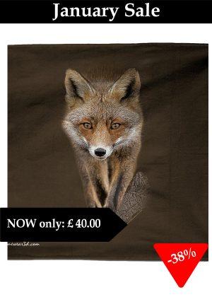 Fox towel_edited-1
