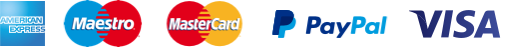 logo_payment_system